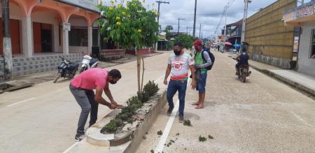 Paisagismo e Jardinagem na Avenida 21 de Abril